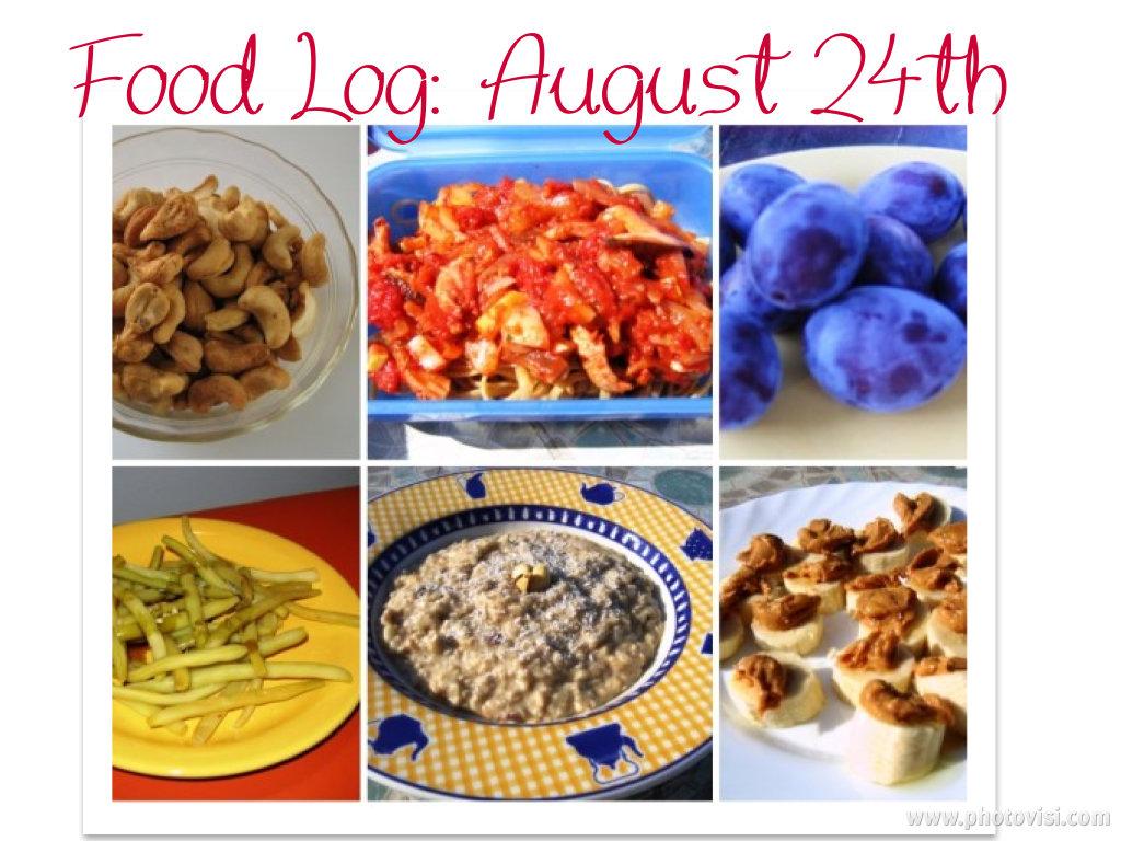 food log, august24