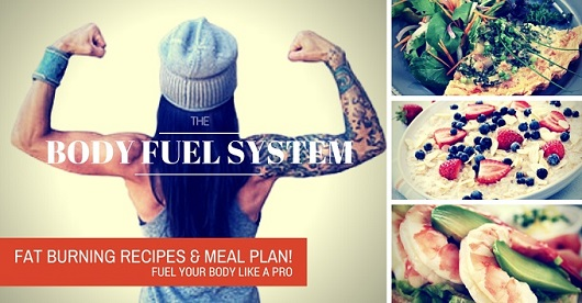The Body Fuel System