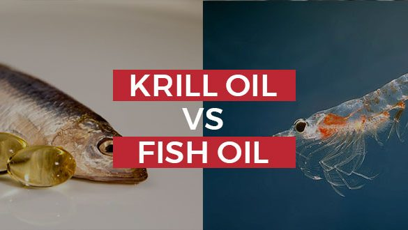 Krill Oil Vs. Fish Oil: Should You Make The Switch? Featured Image