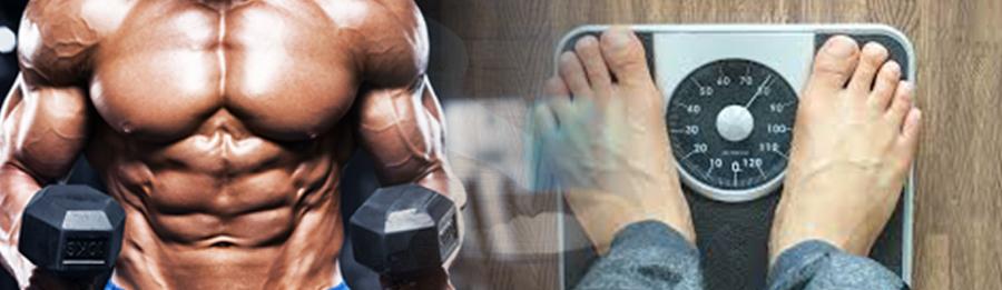 Muscular mand and weight machine